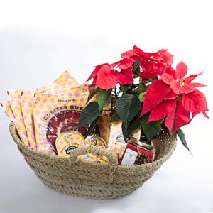 cesta-navidad-grande-productos-zanandgo
