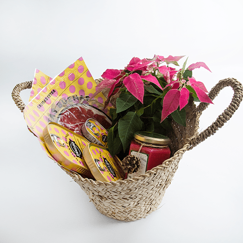 cesta-navidad-pequena-productos-zan-and-go